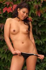 Asian Shan