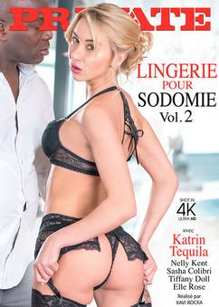 Lingerie pour sodomie vol.2