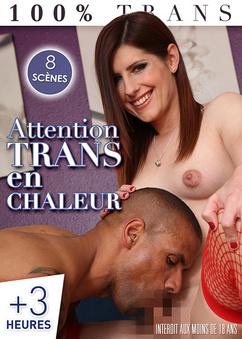 Attention, Trans en chaleur