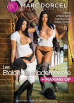 Les Etalons de Mademoiselle