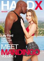 Meet Mandingo vol.4