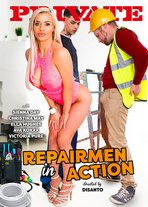 Repairmen in action