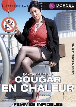 Cougar in Heat