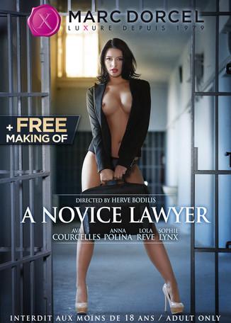 A novice Lawyer