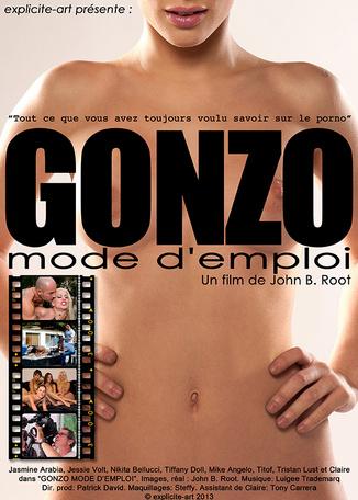 Gonzo mode d'emploi