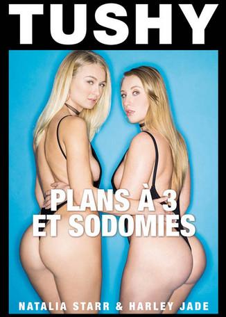 Plans à trois et sodomies