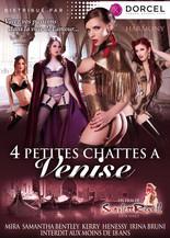 4 Petites chattes à Venise