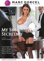 My submissive secretary