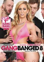 Gangbanged vol.8