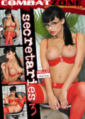 Cover of Secretaries #3