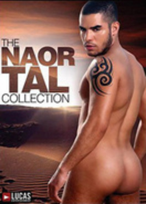 Jaquette de The Naor Tal Collection